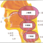 喉声を改善する方法